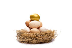 Gouden ei op bovenkant Stock Afbeeldingen
