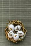 Gouden ei over groene gradiëntachtergrond Stock Foto's