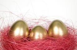 Gouden ei voor de vakantie van Pasen Royalty-vrije Stock Foto's