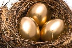 Gouden eieren in een nest Royalty-vrije Stock Fotografie