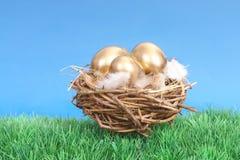 Gouden eieren in nest stock afbeelding