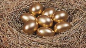 Gouden eieren in nest stock footage