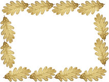 Gouden eiken kader vector illustratie