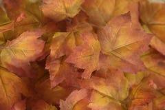 gouden en oranje bladerendecoratie stock afbeeldingen