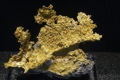 Gouden erts royalty-vrije stock foto's