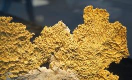 Gouden erts royalty-vrije stock afbeelding
