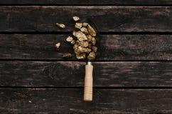 Gouden erts in een schop Schatjager adventurer stock foto
