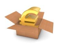 Gouden Euro in Doos Royalty-vrije Stock Afbeeldingen
