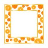 Gouden frame met sinaasappelen Stock Afbeeldingen
