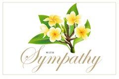 Gouden frangipani of plumeriabloemen met bladeren Vectoruitnodigingsprentbriefkaar vector illustratie