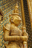 Gouden Gaint Stock Afbeeldingen