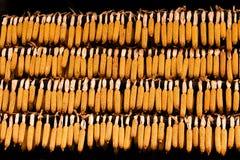 Gouden-gele graanrijen Stock Afbeeldingen