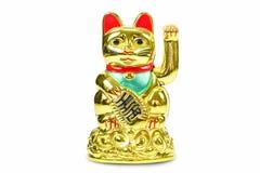 Gouden gelukkige die kat op witte achtergrond wordt geïsoleerd Royalty-vrije Stock Foto