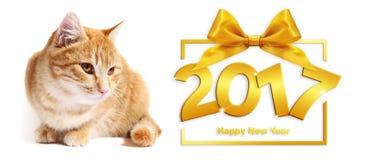 gouden gelukkige nieuwe het jaartekst van 2017 en gemberkat op witte backgrou Stock Foto