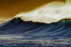 Gouden golfnevel Stock Afbeeldingen
