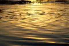 Gouden golven Royalty-vrije Stock Fotografie