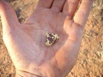Gouden goudklompje in een mensen` s hand op de goudvelden van Westelijk Australië stock foto