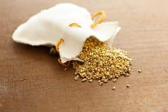 Gouden goudklompjes die uit morsen Royalty-vrije Stock Foto