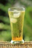 Gouden guarana frisdrank met ijsblokjes stock afbeelding