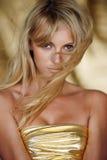 Gouden haar Stock Fotografie
