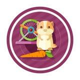 Gouden hamster die wortel eten Stock Foto