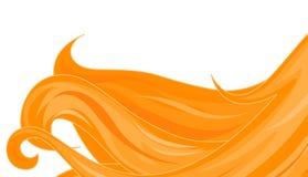 Gouden haren vector illustratie