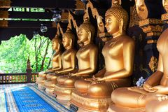 Gouden is het standbeeld van Boedha in Meditate van de tempelagent van Thailand van Boedha stock afbeelding