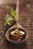 Gouden honing Stock Afbeeldingen