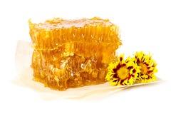 Gouden honingraat en bloemen Royalty-vrije Stock Afbeelding