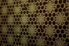 Gouden honingraatmozaïek stock foto