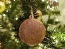 Gouden Kerstmissnuisterij op boom royalty-vrije stock foto