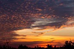 Gouden kleur van dramatische wolken en hemel Royalty-vrije Stock Foto's