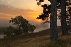 Gouden kleuren van een dageraad Stock Foto's