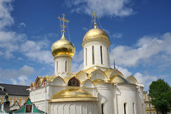 Gouden Koepels van Drievuldigheidskathedraal met St Nikon Kerk royalty-vrije stock fotografie