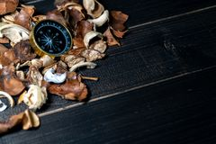 Gouden kompas gezet op droge bladeren op houten retro zwarte lijst royalty-vrije stock foto