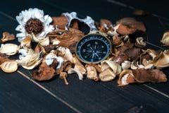 Gouden kompas gezet op droge bladeren op houten retro zwarte lijst royalty-vrije stock fotografie
