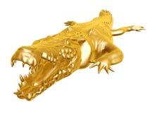 Gouden krokodil Stock Foto's