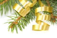 Gouden krullend lint Stock Foto