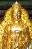 Gouden kuan Royalty-vrije Stock Afbeelding