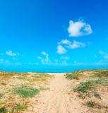 Gouden kust onder wolken Stock Foto