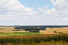 Gouden landbouwgronden Royalty-vrije Stock Afbeelding