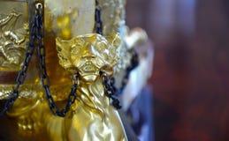 Gouden leeuw stock foto