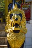 Gouden leeuw in de tempel stock fotografie