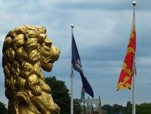 Gouden leeuwstandbeelden in profiel die het historische rochdalestadhuis verfraaien tegen een dramatische hemel met stadsvlaggen  Royalty-vrije Stock Foto