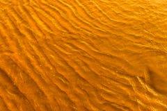 Gouden licht die van een watergolf bij het overzees nadenken en zand op zonsondergang Royalty-vrije Stock Afbeeldingen