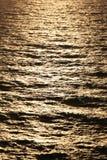 Gouden lichte bezinning   Stock Foto's