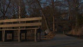Gouden lichte zonsondergang die een bank en een houten dek aan de kant van een meer openbaren stock video