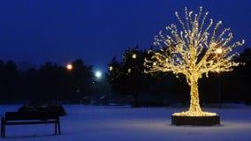 Gouden lichtenkerstboom stock footage