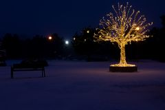 Gouden lichtenkerstboom Stock Afbeelding