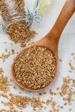 Gouden lijnzaad Micronutrient voordelig voor het organisme dat verhindert en kwalen geneest Rijken in vezel en voedingsmiddelen stock afbeelding